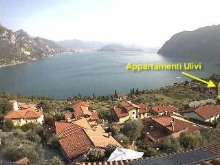 ULIVI- Lago d'Iseo-Riva di Solto,Christo,Montisola