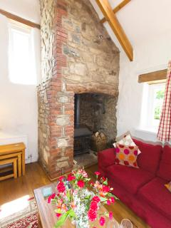 Fire place with wood burning stove
