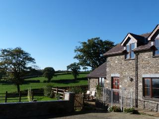 Farm Cottage with Hot Tub  - Beudy Bach  - 45888, Lampeter