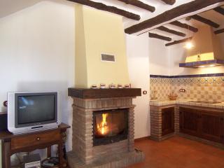 Salón - Cocina con chimenea