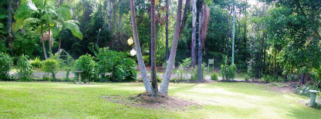 Large yard area