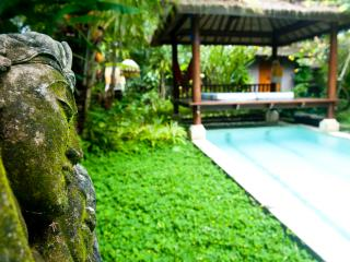 Charming villa with private12m pool,lush gardens, Ubud