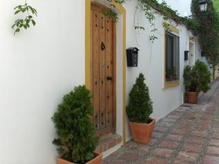 Fantastic Apartment in Casco Antiguo, Marbella
