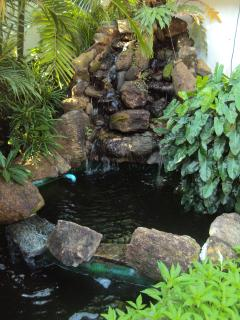 the waterfall of the pond