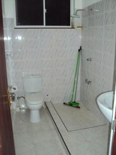 the smaller bathroom (without hot water, but with shower and WC)
