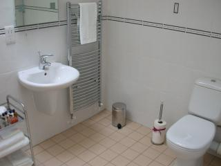 The Wet Room is very spacious and maintained to a very high standard.