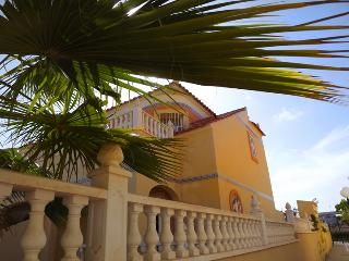 View of the side of the house and part of the palm tree which is in the front garden.