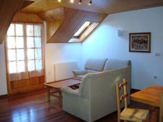 Alquiler apartamentos Sallent, Sallent de Gallego