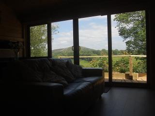 THE LODGE VIEW
