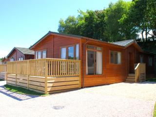 6 berth Oakwood Lodge, Dawlish