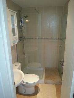 Family bathroom with large walk in shower.