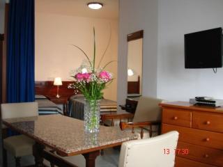 Salón apartamento estudio nº 41   Nº Registro  (2015/1753)