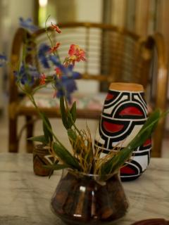 Tasteful decoration for you contemplentation, including indigenous handcraft from Amazon region