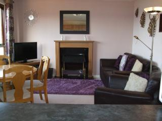 Cosy lounge with leather sofa, 32' flat screen colour t.v. video dvd player docking station