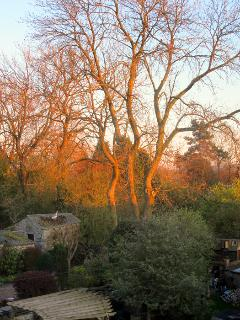 view from 3rd bedroom window . to the rear garden .this picture was taken at sunset .