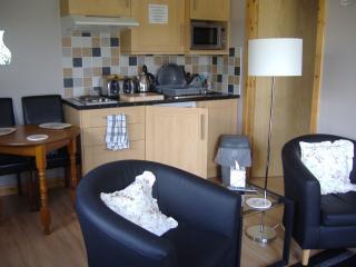Kitchen Area/Lounge