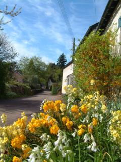Outside Forge Holiday Cottage