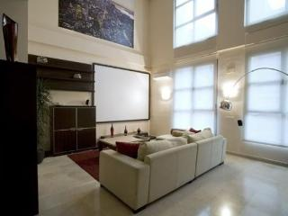 ESPECTACULAR LOFT DE 120 M², Madrid