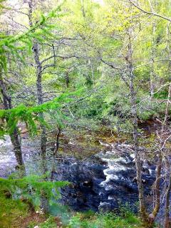 River Nethy view