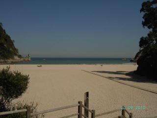 La arboleda 1 (playa La Franca)