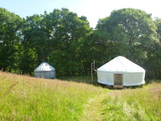 The Welsh and Black Yurt set in their own paddock