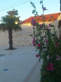 Le Parour : jardin / garden