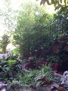 jardin con estanque, las ventanas del comedor dan a este jardin, desde el se ve piscina,garden with