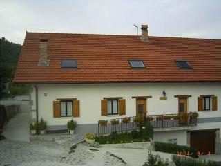 Casa Rural Apej I y II, Orbaitzeta
