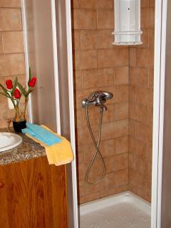 The shower upstairs