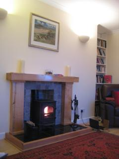 Cosy Fire in Living Room