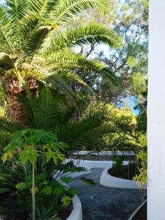 La Noria also has a beautiful established garden with mature palms giving necessary shade in summer