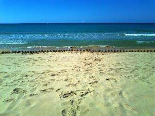 spiaggia  di lido fiori ad agosto