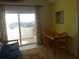 The Large Lounge and Balcony in this Apartment are Ideal for Familys
