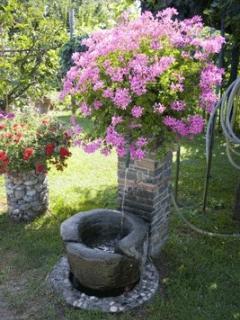 particular of the garden