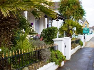 The Albury palm veranda, a perfect place to relax and watch the world go by.