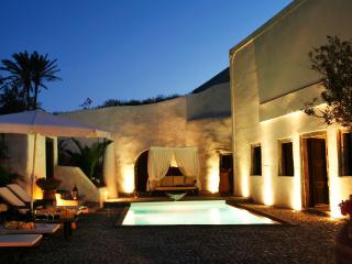 Famous Santorini villa with private pool- Car Rental & Private Transfer included