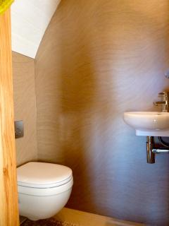 Wet room with, Toilet, basin and shower