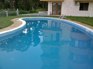 The swimming pool is 10 metres outside the French doors. Great to cool off.