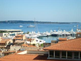 Sea view Cannes holiday apartment with balcony.