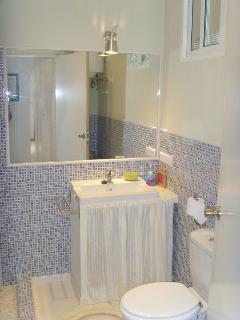 Baño principal planta baja