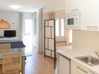 Studio Apt in La Massana