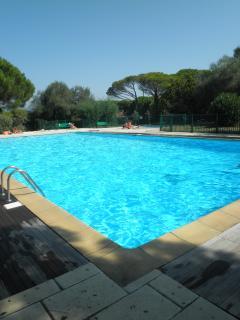 property's swimming pool