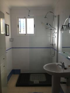 Ground floor bathroom with walk-in shower