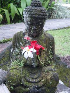 A Buddha statue in the garden