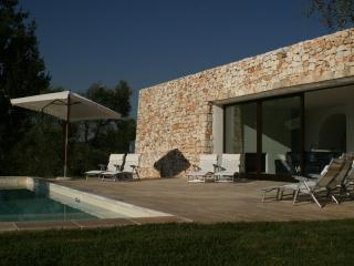 Sun terrace and pool at the back of the villa