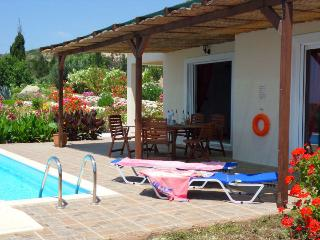 Villa Artemis : private pool to relax in privacy, Skala