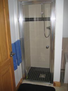 Bathroom - walk in shower in addition to a separate bath