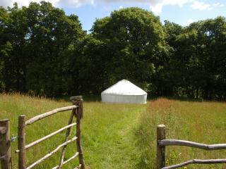 Two Welsh yurts, Llanidloes