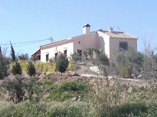Casa de campo entre olivos y frutales, Cieza