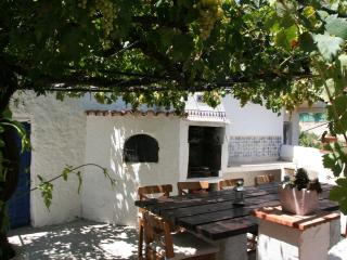 Summer terrace with BBQ under the grapes